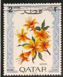 Name:  qatar-2.jpg Views: 1145 Size:  6.3 KB