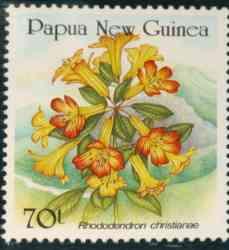 Name:  papua_christianiae.jpg Views: 1040 Size:  7.2 KB