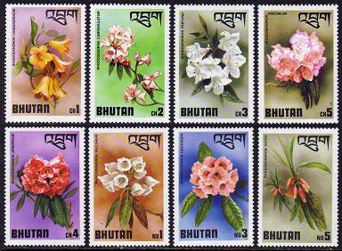 Name:  Bhutan203.jpg Views: 946 Size:  38.9 KB